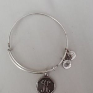 Alex and Ani charm braclet